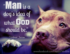 Pitbull Dog Quotes And Sayings