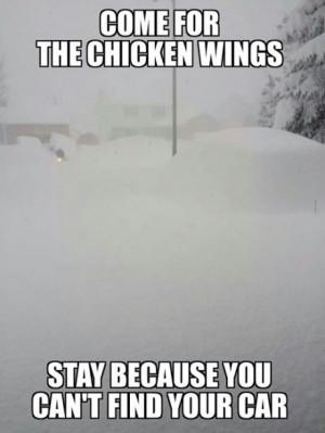 funny-buffalo-snow-storm