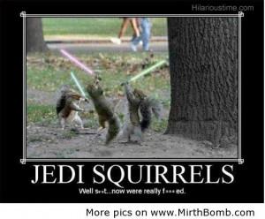 Jedi funny squirrels
