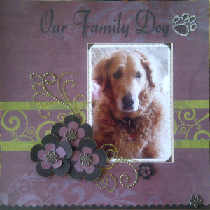 related links cat scrapbooking ideas scrapbook pages about animals