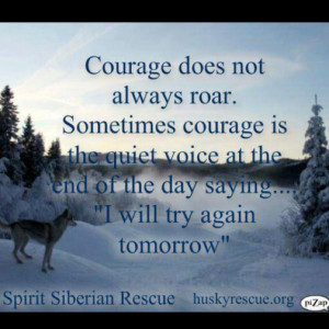 Funny Quotes About Courage