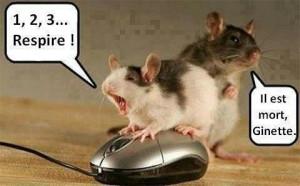 ... /2013 à 12:56 par zezete2 Tags : humour insolite drole ou pas droles