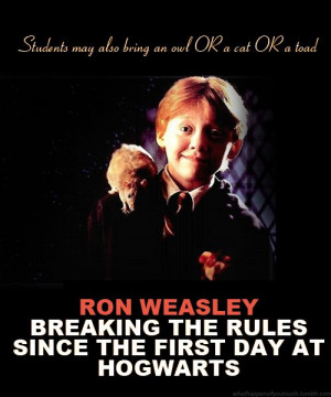 ron weasley quotes - Google Search