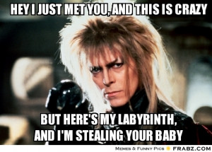 frabz-hey-i-just-met-you-and-this-is-crazy-but-heres-my-labyrinth-and ...