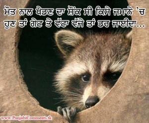 Very Funny Animal Punjabi Photos Comments Quotes Wallpaper Free For
