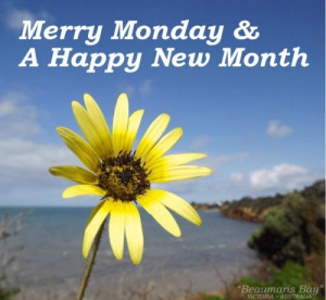 new month merry monday a happy new month