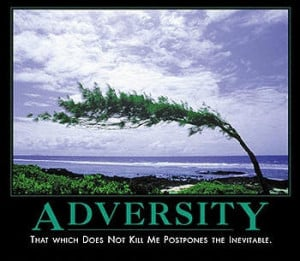Adversity quote #2