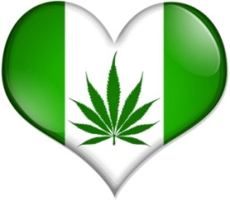 Stop Smoking Weed Quotes Weed quotes page image