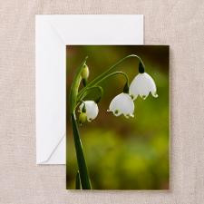 Lily of the valley Greeting Card for
