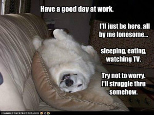 Have a good day at work
