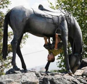 Horse riding skill