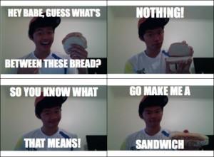 awesome #funny #sayings #makemeasandwich #lol #lmao #roflmao #haha