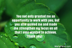 you not only granted me an opportunity to work with you but you also ...