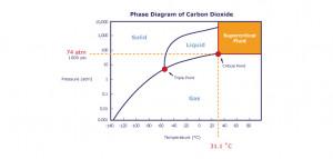 Figure Phase Diagram Carbon