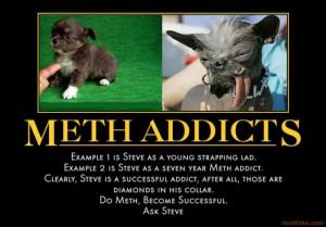 photo meth-addicts-dog-meth-addict-demotivational-poster-1257988391 ...