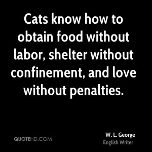 Cats know how to obtain food without labor, shelter without ...
