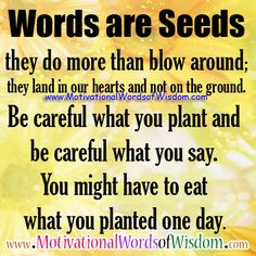 careful what you plant and be careful what you say you might have to ...