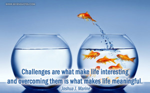 Challenges are what make life interesting and overcoming them is what ...