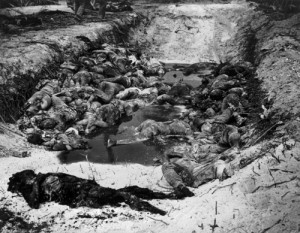 the bodies of dead japanese soldiers who died in combat