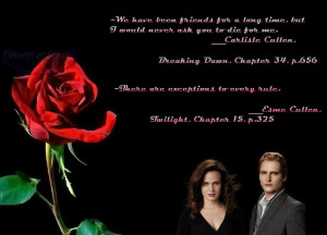 Quotes From Twilight About...