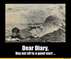 dear diary da not off to a good start / crocodile :: funny pictures ...