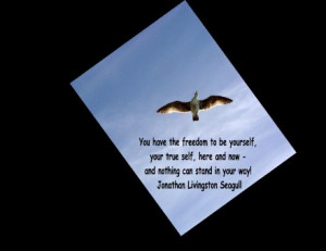 ... and now and nothing can stand in your way jonathan livingston seagull