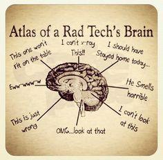 Atlas of Rad Tech's Brain More
