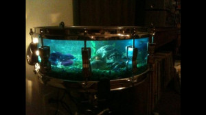 Drum fish tank
