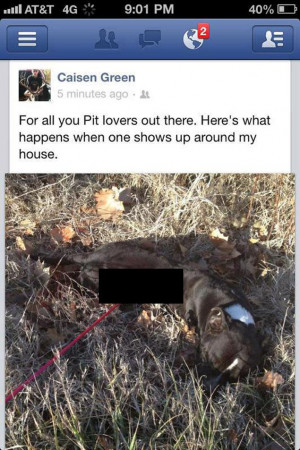 ... teen who posted pic of dead dog on Facebook receives death threats
