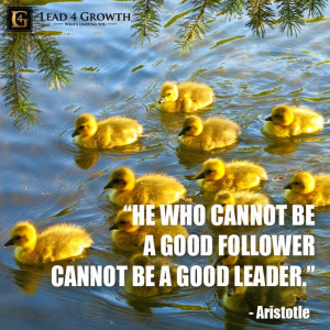 ... Quotes, Lead4Growth Ducks, Good Quotes, Quotes Leadership, Nature