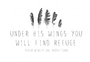 God, under his wings Psalm 91:4