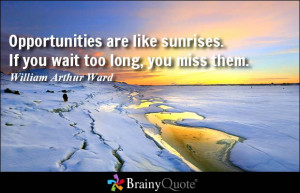 Opportunities are like sunrises. If you wait too long, you miss them ...