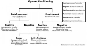 Pavlov's Duck: Behaviorism and Control of Society