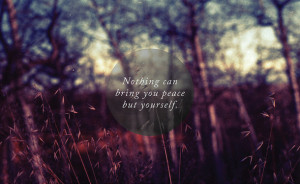 life quote, life quotes, peace, quote, quotes