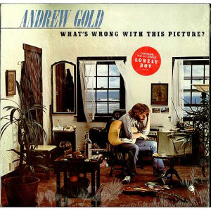 Andrew Gold What 39 s Wrong with This Picture