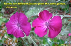 Sisters are different flowers from the same garden .