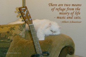 ... refuge from the misery of life – music and cats. ~ Albert Schweitzer