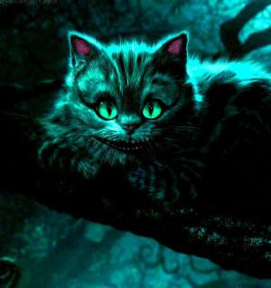 Tim Burton Cheshire Cat Quotes