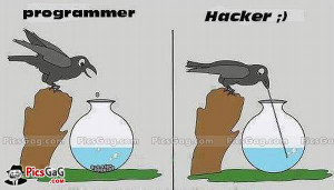 Funny Difference Between Programmer Vs Hacker