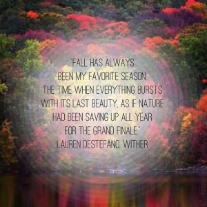 My favorite season Love letter quotes for her