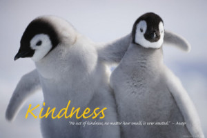 42 17836203 36 24kindness posters