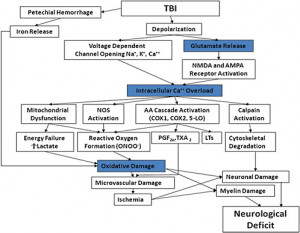 the results traumatic brain injury vary widely type and duration