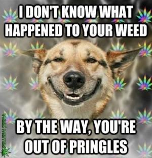 dog ate the weed funny weed memes – jokes -quotes #smoke #marijuana