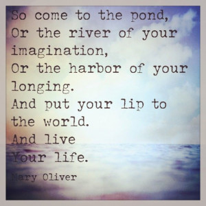 ... Mary Olive Quotes, Living Life, Poetry Quotes, Live Life, Mary Oliver