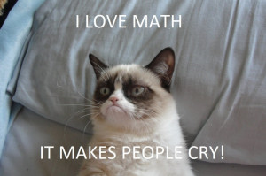 ... Quotes Gallery: Funny Cat Pictures Quotes I Love Math It Makes People