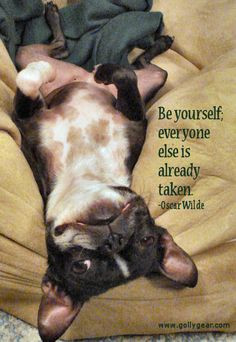 ... Wilde, Quote. French Bulldog. french bulldog quotes, french bulldogs