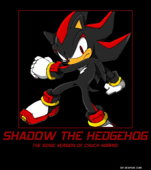 Baby Shadow The Hedgehog Salty