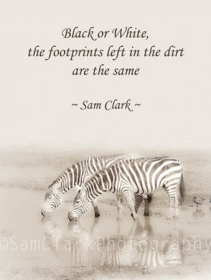 Zebra Photograph Quote, Wall Art, Inspired Quote, African Wildlife ...