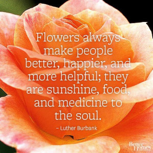 ... flower quotes here: http://www.bhg.com/gardening/flowers/flower-quotes
