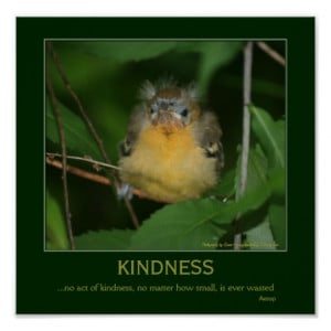 Kindness Baby Oriole Bird Motivational Quote Poster